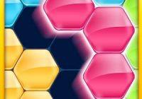 solution block hexa puzzle Novice