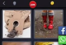 solution 4 Images 1 Mot niveau 2295