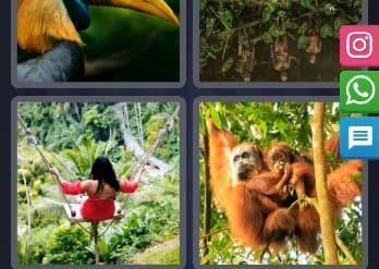 4 Images 1 Mot Énigme Journalière indonésie 12 Février 2020