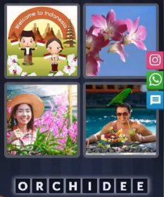 4 Images 1 Mot Énigme Journalière bonus indonésie jour 29