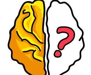 solution Brain Out Niveau 225