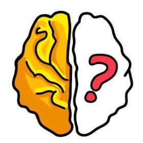 solution Brain Out Niveau 196