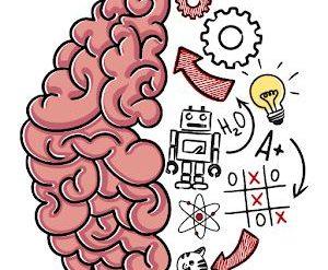 solution Brain Test Niveau 24