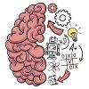 brain test solution complet