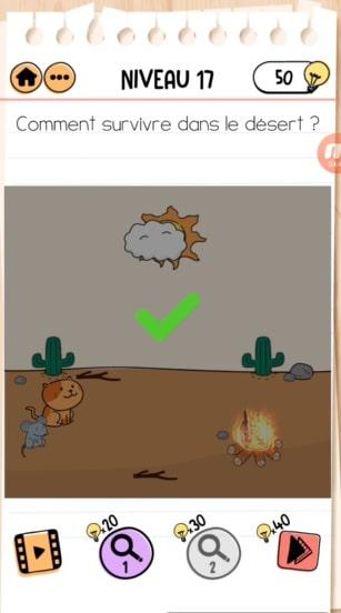 solution Brain Test 2 Les aventures de Rouky NIVEAU 17