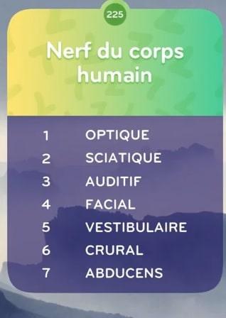 top 7 Niveau 225 - NERF DU CORPS HUMAIN